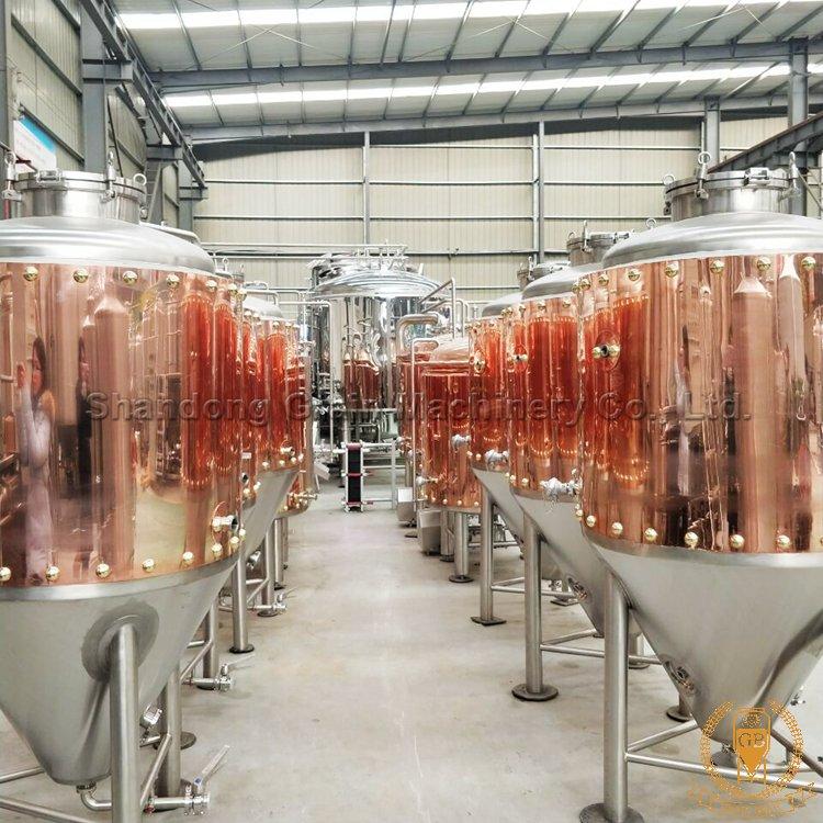 Microbrewery Equipment Grainbrew Leading Manufacturer